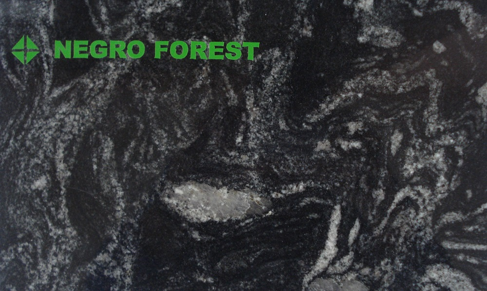Negro Forest